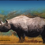blackrhino_extinct